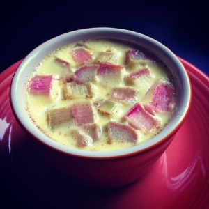rhubarb custard