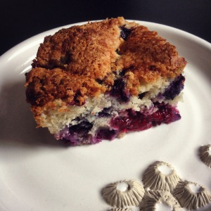 summer blueberry cake, with added nectarberries